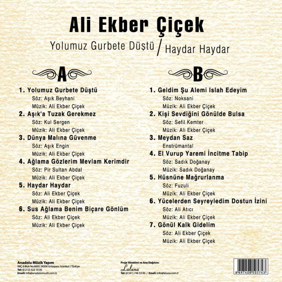 Ali Ekber Çiçek - Yolumuz Gurbete Düştü / Haydar Haydar - Plak
