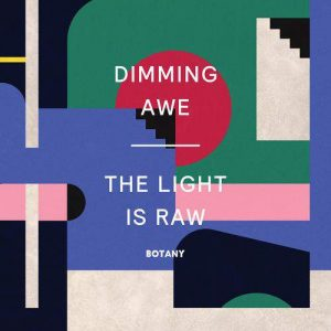 Botany - Dimming Awe, The Light Is Raw (Pink Vinyl)