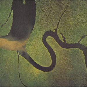 Dead Can Dance The Serpent's Egg - Plak