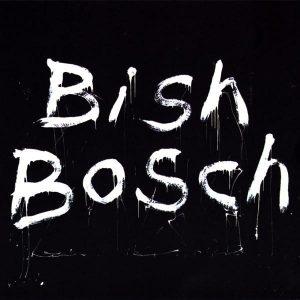 Scott Walker  Bish Bosch - Plak
