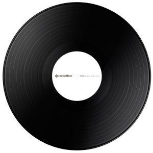 Pioneer RB-VS1-K Rekordbox DJ DVS Control Vinyl Siyah