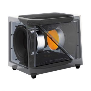 Golden Ear SuperSub X Subwoofer