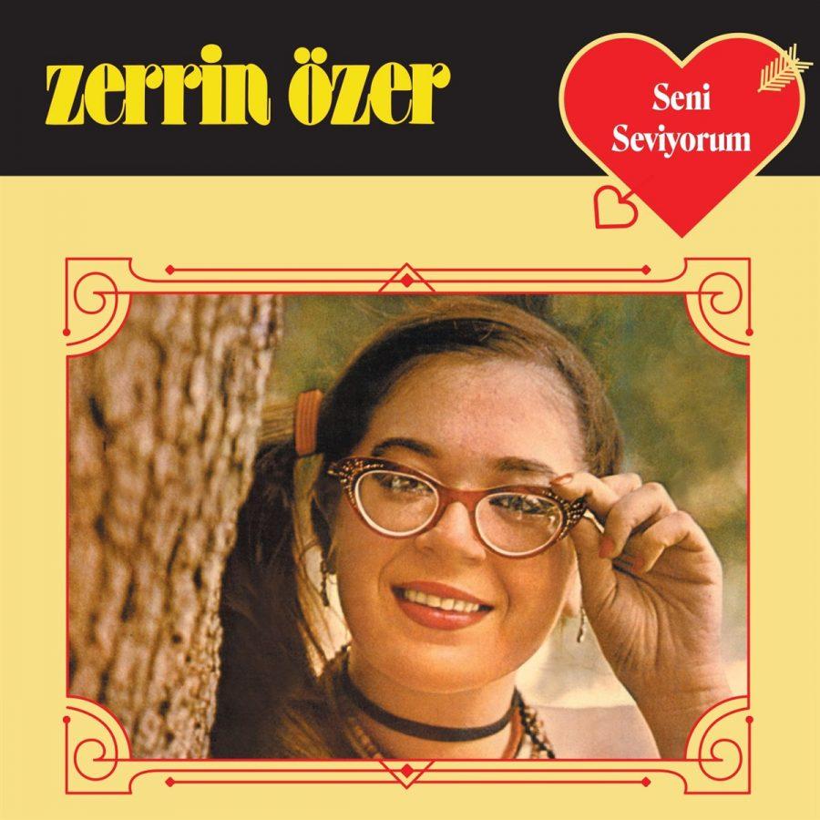 Zerrin Özer Seni Seviyorum - Plak