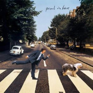 Paul McCartney Paul is Live - Plak