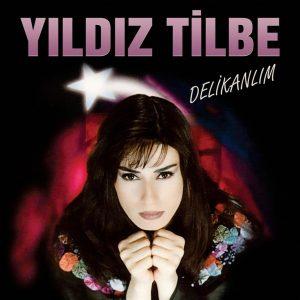 Yıldız Tilbe Delikanlım - Plak