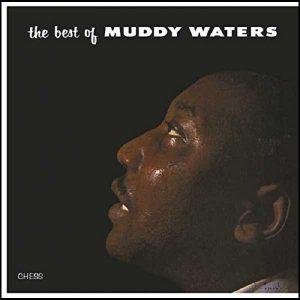 Muddy Waters The Best Of Muddy Waters Plak