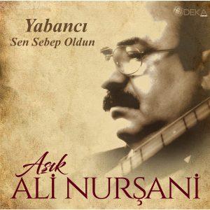 Aşık Ali Nurşani Sen Sebep Oldun - Plak